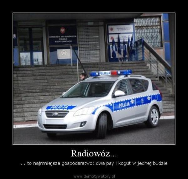 Radiowóz... – ... to najmniejsze gospodarstwo: dwa psy i kogut w jednej budzie
