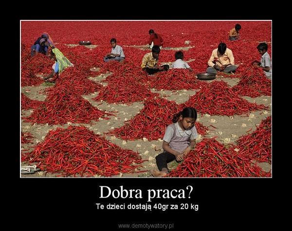Dobra praca? –  Te dzieci dostają 40gr za 20 kg