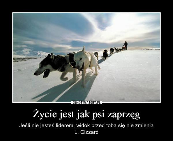 Życie jest jak psi zaprzęg – Jeśli nie jesteś liderem, widok przed tobą się nie zmieniaL. Gizzard