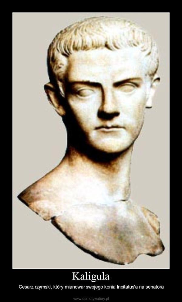 Kaligula – Cesarz rzymski, który mianował swojego konia Incitatus'a na senatora