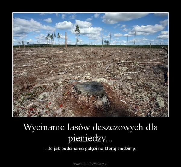 Wycinanie lasów deszczowych dla pieniędzy... – ...to jak podcinanie gałęzi na której siedzimy.