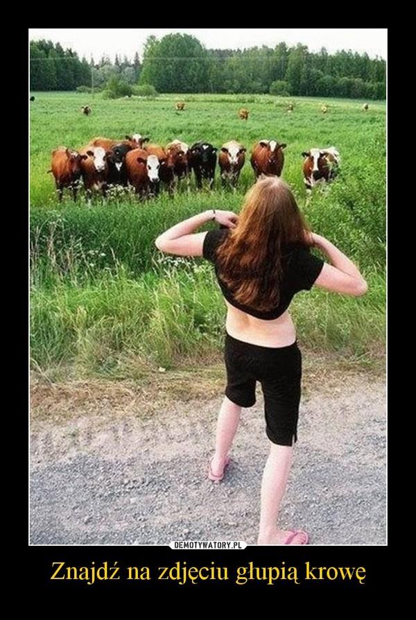 Znajdź na zdjęciu głupią krowę –