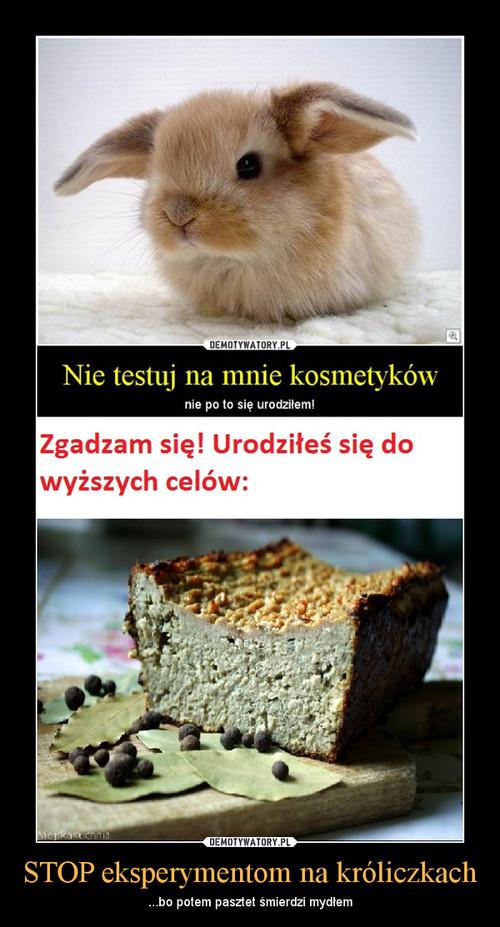STOP eksperymentom na króliczkach