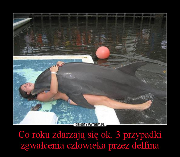 Co roku zdarzają się ok. 3 przypadki zgwałcenia człowieka przez delfina –