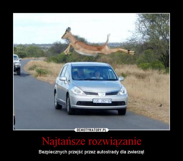 Najtańsze rozwiązanie – Bezpiecznych przejść przez autostrady dla zwierząt