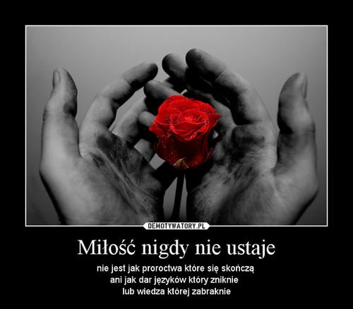 Miłość nigdy nie ustaje