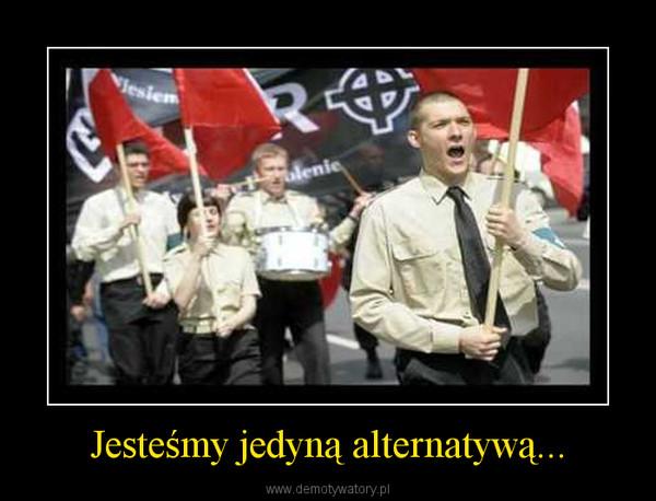 Jesteśmy jedyną alternatywą... –