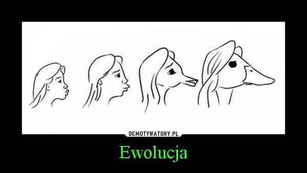 Ewolucja –