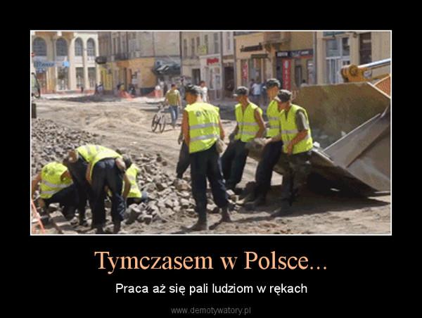 Tymczasem w Polsce... – Praca aż się pali ludziom w rękach