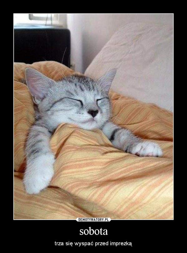 sobota – trza się wyspać przed imprezką