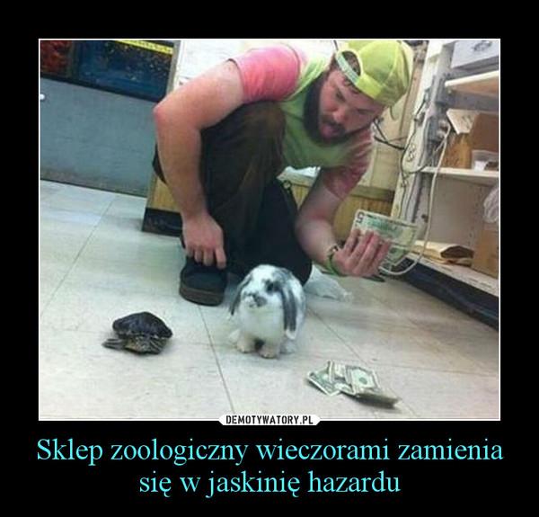 Sklep zoologiczny wieczorami zamienia się w jaskinię hazardu –