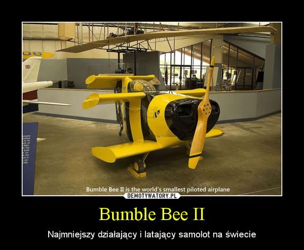 Bumble Bee II – Najmniejszy działający i latający samolot na świecie