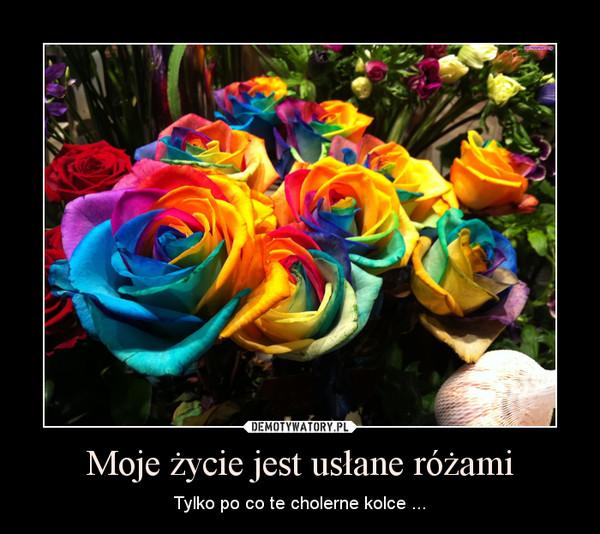 Moje życie jest usłane różami – Tylko po co te cholerne kolce ...
