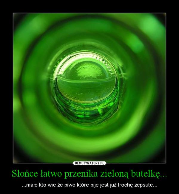 Słońce łatwo przenika zieloną butelkę... – ...mało kto wie że piwo które pije jest już trochę zepsute...