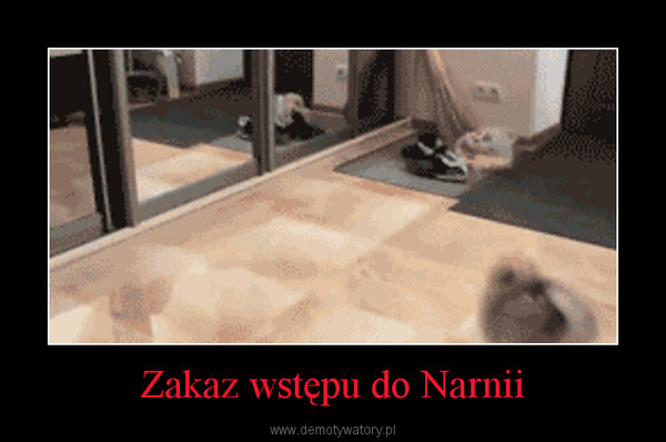Zakaz wstępu do Narnii –