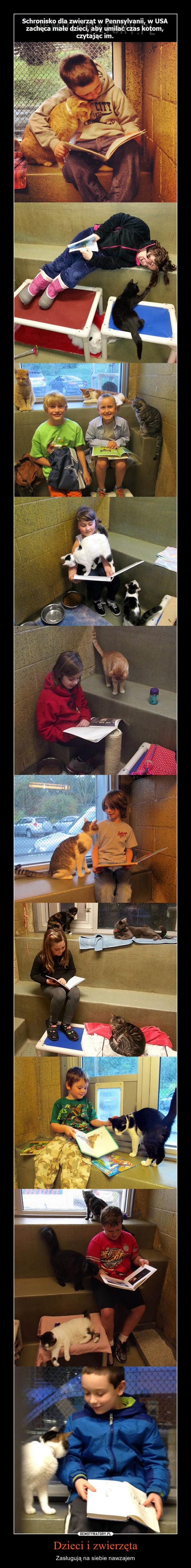Dzieci i zwierzęta – Zasługują na siebie nawzajem