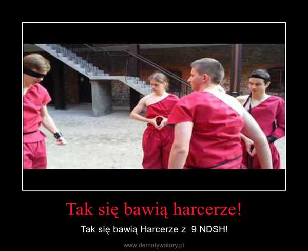 Tak się bawią harcerze! – Tak się bawią Harcerze z  9 NDSH!