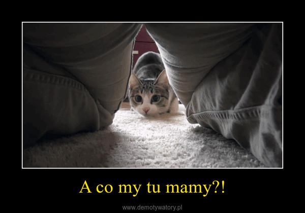A co my tu mamy?! –