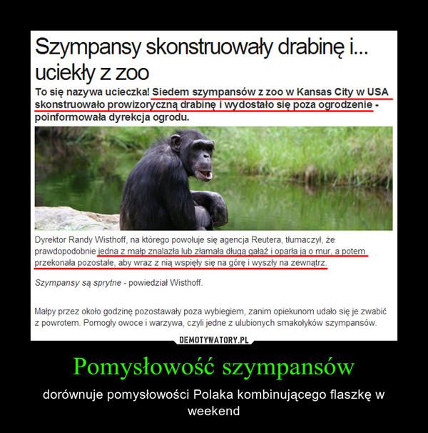 Pomysłowość szympansów – dorównuje pomysłowości Polaka kombinującego flaszkę w weekend