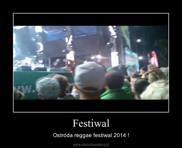 Festiwal – Ostróda reggae festiwal 2014 !