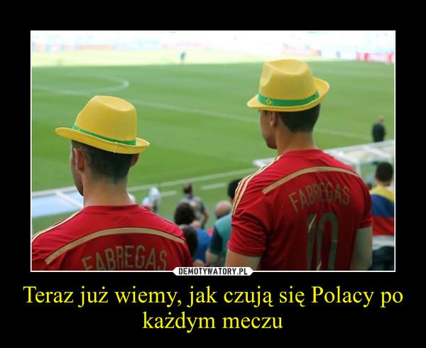 Teraz już wiemy, jak czują się Polacy po każdym meczu –