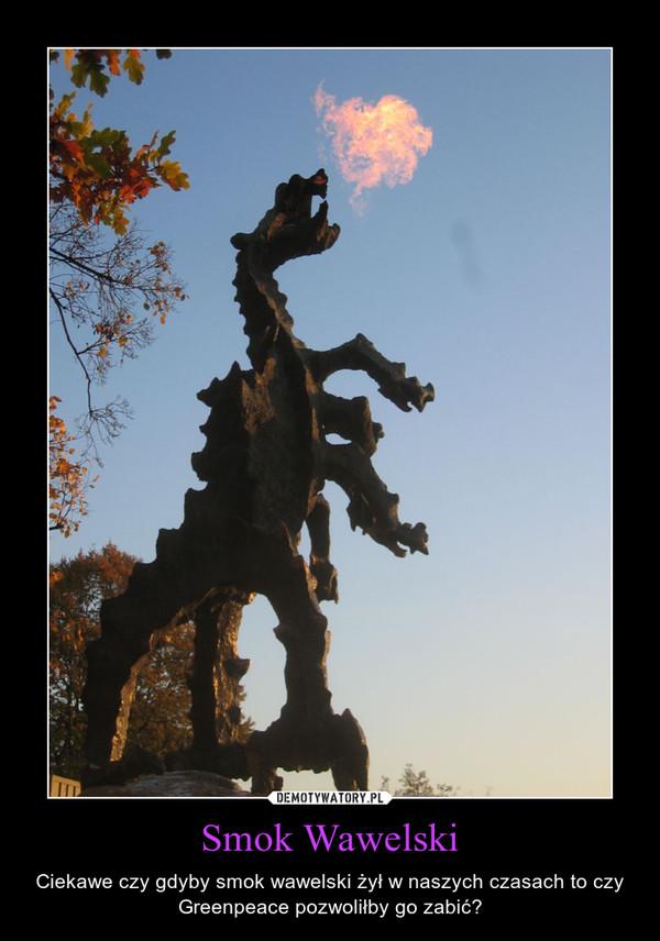 Smok Wawelski – Ciekawe czy gdyby smok wawelski żył w naszych czasach to czy Greenpeace pozwoliłby go zabić?