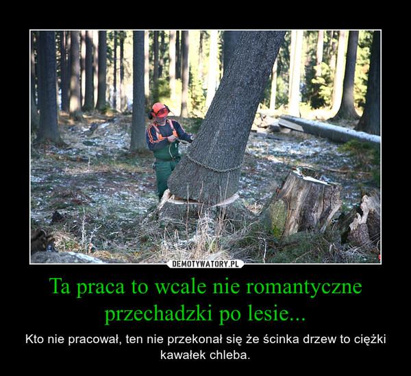 Ta praca to wcale nie romantyczne przechadzki po lesie... – Kto nie pracował, ten nie przekonał się że ścinka drzew to ciężki kawałek chleba.