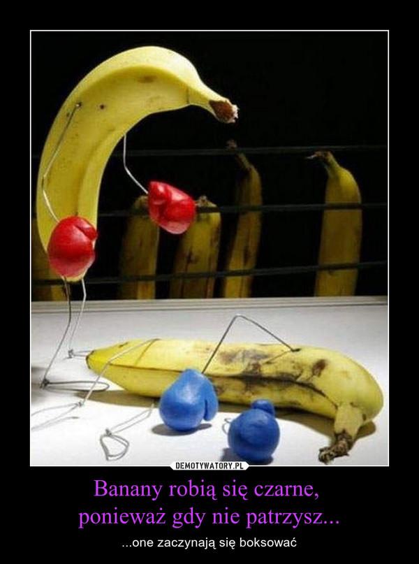 Banany robią się czarne, ponieważ gdy nie patrzysz... – ...one zaczynają się boksować