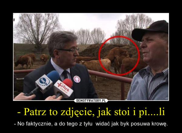 - Patrz to zdjęcie, jak stoi i pi....li – - No faktycznie, a do tego z tyłu  widać jak byk posuwa krowę.