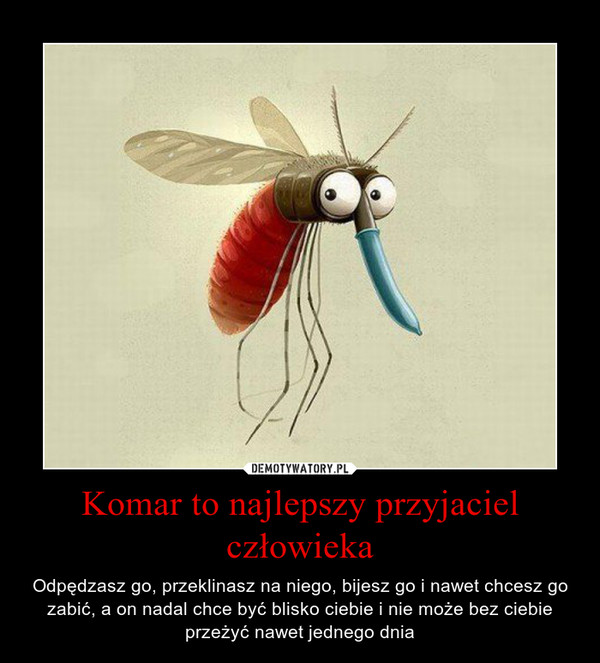 Komar to najlepszy przyjaciel człowieka – Odpędzasz go, przeklinasz na niego, bijesz go i nawet chcesz go zabić, a on nadal chce być blisko ciebie i nie może bez ciebie przeżyć nawet jednego dnia
