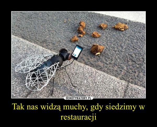 Tak nas widzą muchy, gdy siedzimy w restauracji –