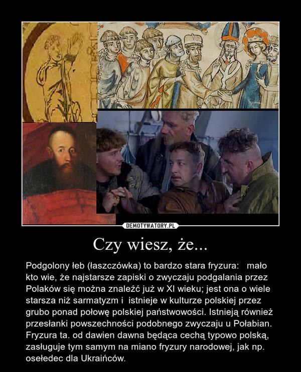 Czy wiesz, że... – Podgolony łeb (łaszczówka) to bardzo stara fryzura:   mało kto wie, że najstarsze zapiski o zwyczaju podgalania przez Polaków się można znaleźć już w XI wieku; jest ona o wiele starsza niż sarmatyzm i  istnieje w kulturze polskiej przez grubo ponad połowę polskiej państwowości. Istnieją również przesłanki powszechności podobnego zwyczaju u Połabian.    Fryzura ta. od dawien dawna będąca cechą typowo polską, zasługuje tym samym na miano fryzury narodowej, jak np. osełedec dla Ukraińców.