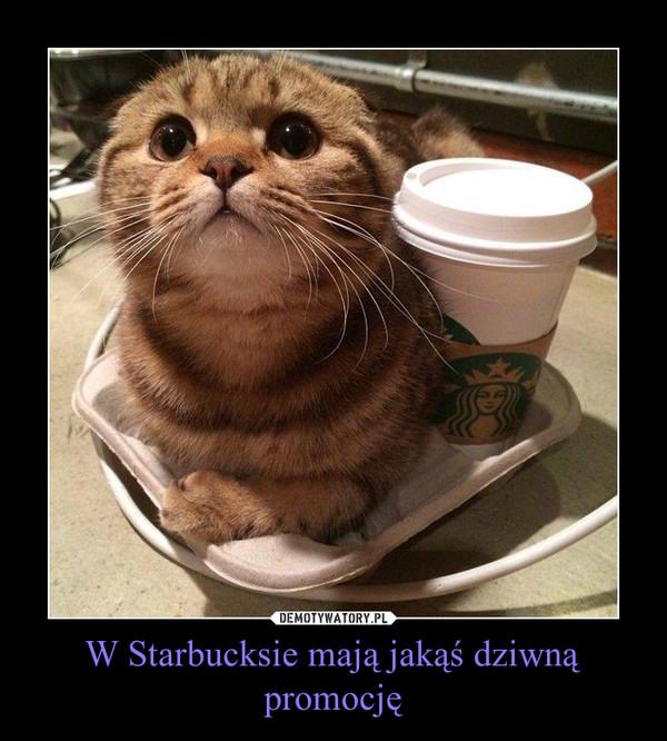 W Starbucksie mają jakąś dziwną promocję –