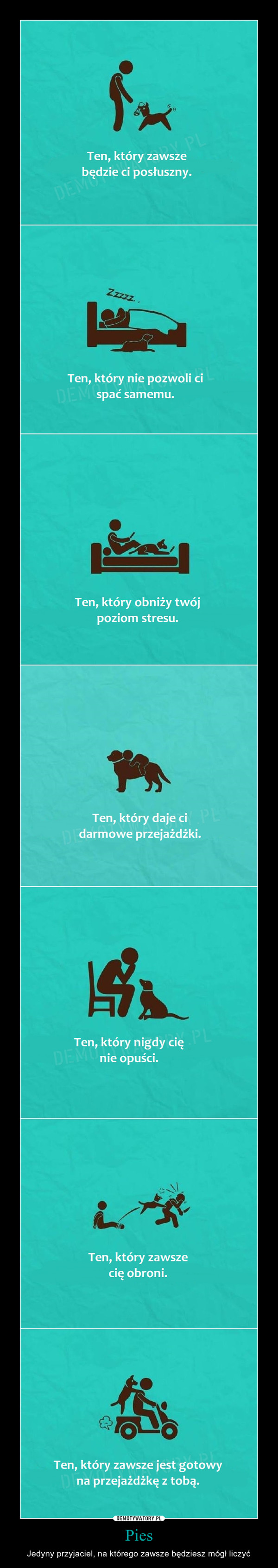 Pies – Jedyny przyjaciel, na którego zawsze będziesz mógł liczyć Ten, który zawsze będzie ci posłuszny. Ten, który nie pozwoli ci spać samemu. Ten, który obniży twój poziom stresu. Ten, który daje ci darmowe przejażdżki. Ten, który nigdy cię nie opuści. Ten, który zawsze jest gotowy na przejażdżkę z tobą.