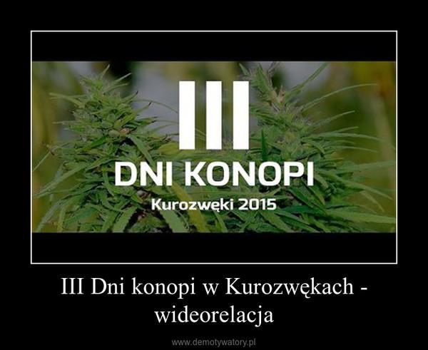 III Dni konopi w Kurozwękach - wideorelacja –