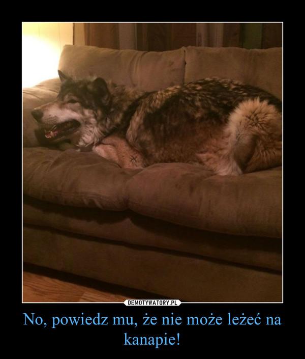 No, powiedz mu, że nie może leżeć na kanapie! –