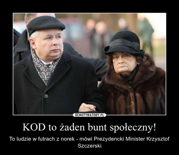 KOD to żaden bunt społeczny! – To ludzie w futrach z norek - mówi Prezydencki Minister Krzysztof Szczerski