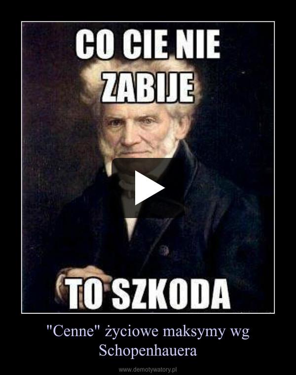 """Cenne"" życiowe maksymy wg Schopenhauera –"