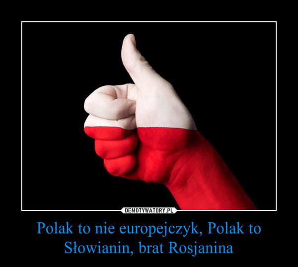 Polak to nie europejczyk, Polak to Słowianin, brat Rosjanina –