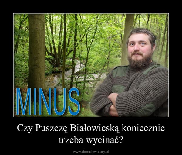 Czy Puszczę Białowieską koniecznie trzeba wycinać? –