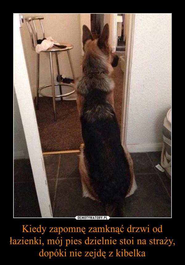 Kiedy zapomnę zamknąć drzwi od łazienki, mój pies dzielnie stoi na straży, dopóki nie zejdę z kibelka –