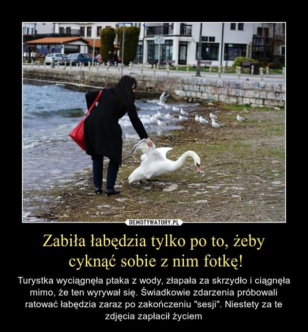 """Zabiła łabędzia tylko po to, żeby cyknąć sobie z nim fotkę! – Turystka wyciągnęła ptaka z wody, złapała za skrzydło i ciągnęła mimo, że ten wyrywał się. Świadkowie zdarzenia próbowali ratować łabędzia zaraz po zakończeniu """"sesji"""". Niestety za te zdjęcia zapłacił życiem"""