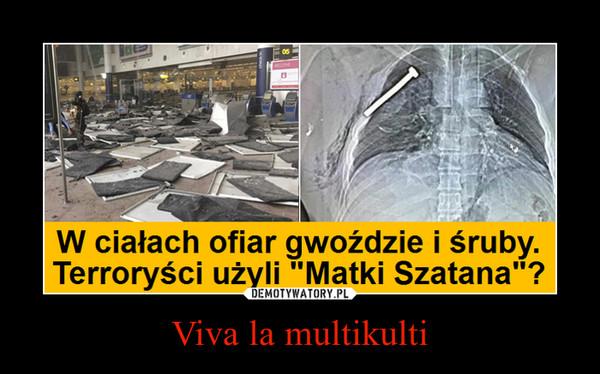 Viva la multikulti –