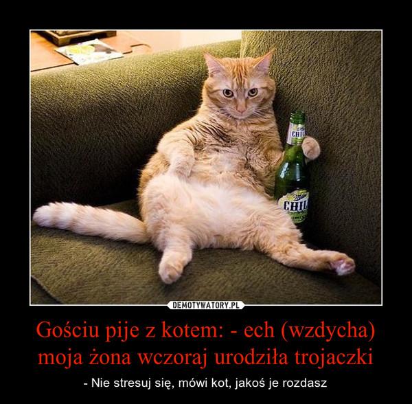 Gościu pije z kotem: - ech (wzdycha) moja żona wczoraj urodziła trojaczki – - Nie stresuj się, mówi kot, jakoś je rozdasz