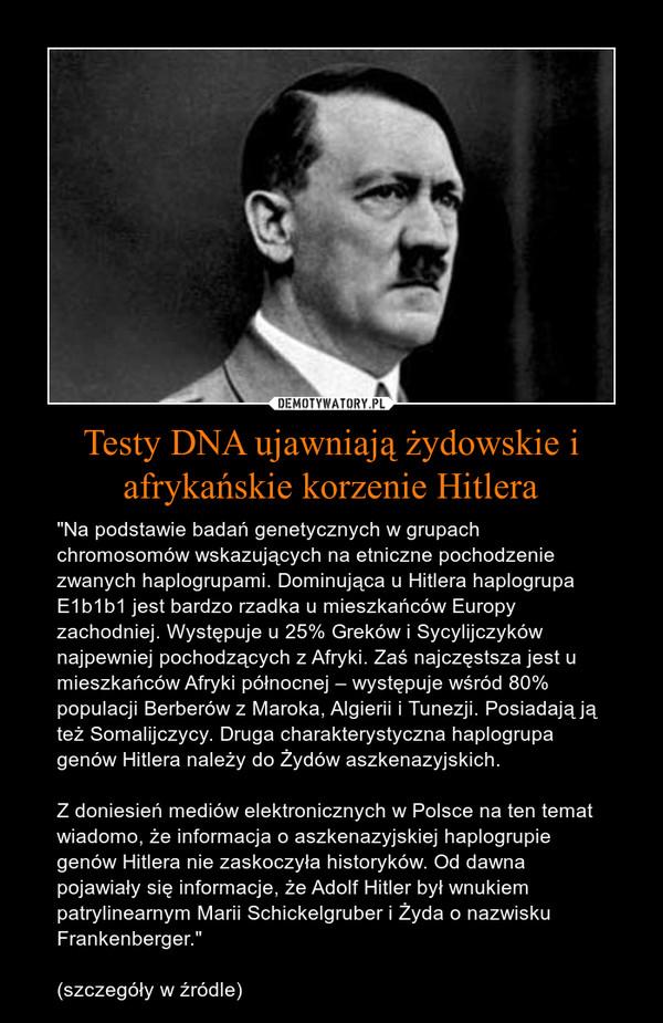"""Testy DNA ujawniają żydowskie i afrykańskie korzenie Hitlera – """"Na podstawie badań genetycznych w grupach chromosomów wskazujących na etniczne pochodzenie zwanych haplogrupami. Dominująca u Hitlera haplogrupa E1b1b1 jest bardzo rzadka u mieszkańców Europy zachodniej. Występuje u 25% Greków i Sycylijczyków najpewniej pochodzących z Afryki. Zaś najczęstsza jest u mieszkańców Afryki północnej – występuje wśród 80% populacji Berberów z Maroka, Algierii i Tunezji. Posiadają ją też Somalijczycy. Druga charakterystyczna haplogrupa genów Hitlera należy do Żydów aszkenazyjskich.Z doniesień mediów elektronicznych w Polsce na ten temat wiadomo, że informacja o aszkenazyjskiej haplogrupie genów Hitlera nie zaskoczyła historyków. Od dawna pojawiały się informacje, że Adolf Hitler był wnukiem patrylinearnym Marii Schickelgruber i Żyda o nazwisku Frankenberger."""" (szczegóły w źródle)"""