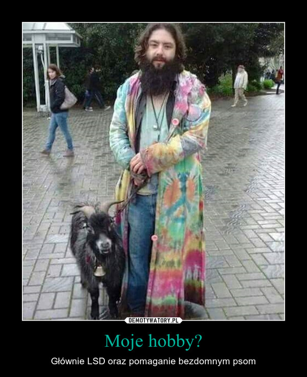 Moje hobby? – Głównie LSD oraz pomaganie bezdomnym psom