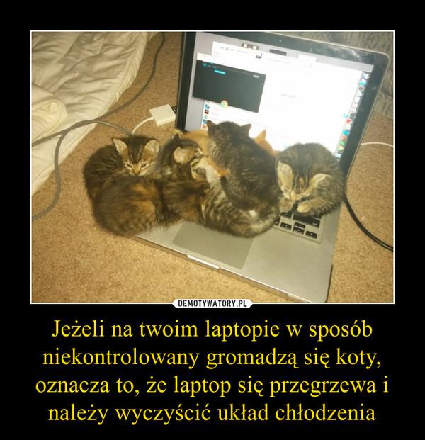 Jeżeli na twoim laptopie w sposób niekontrolowany gromadzą się koty, oznacza to, że laptop się przegrzewa i należy wyczyścić układ chłodzenia –