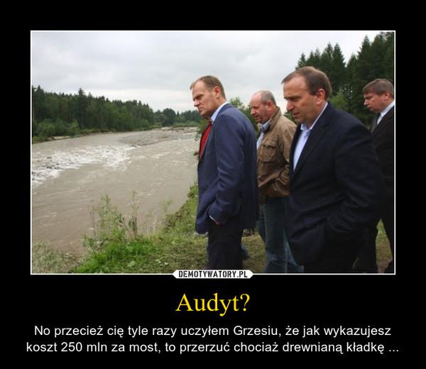 Audyt? – No przecież cię tyle razy uczyłem Grzesiu, że jak wykazujesz koszt 250 mln za most, to przerzuć chociaż drewnianą kładkę ...