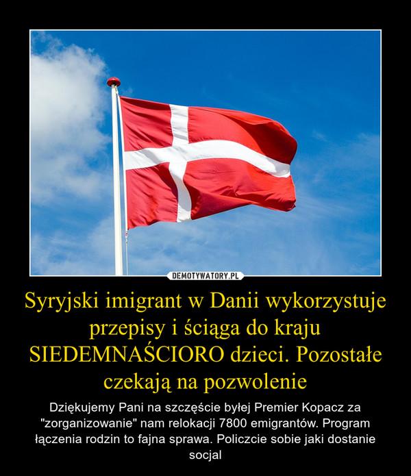 """Syryjski imigrant w Danii wykorzystuje przepisy i ściąga do kraju SIEDEMNAŚCIORO dzieci. Pozostałe czekają na pozwolenie – Dziękujemy Pani na szczęście byłej Premier Kopacz za """"zorganizowanie"""" nam relokacji 7800 emigrantów. Program łączenia rodzin to fajna sprawa. Policzcie sobie jaki dostanie socjal"""