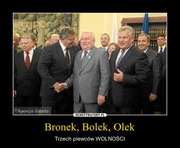 Bronek, Bolek, Olek – Trzech piewców WOLNOŚCI